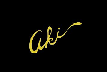 45a(Aki gem)
